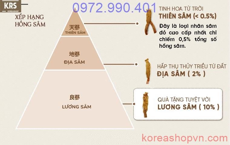 hồng sâm củ khô chính phủ Hàn Quốc Cheong Kwan Jang